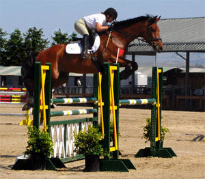 Natalie show jumping Jedi at Sonoma Horse Park