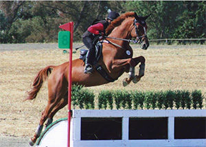 Bellespoir jumping brush cross country