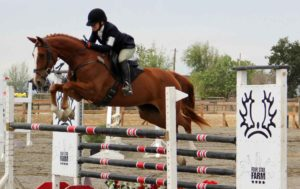Belle show jumping
